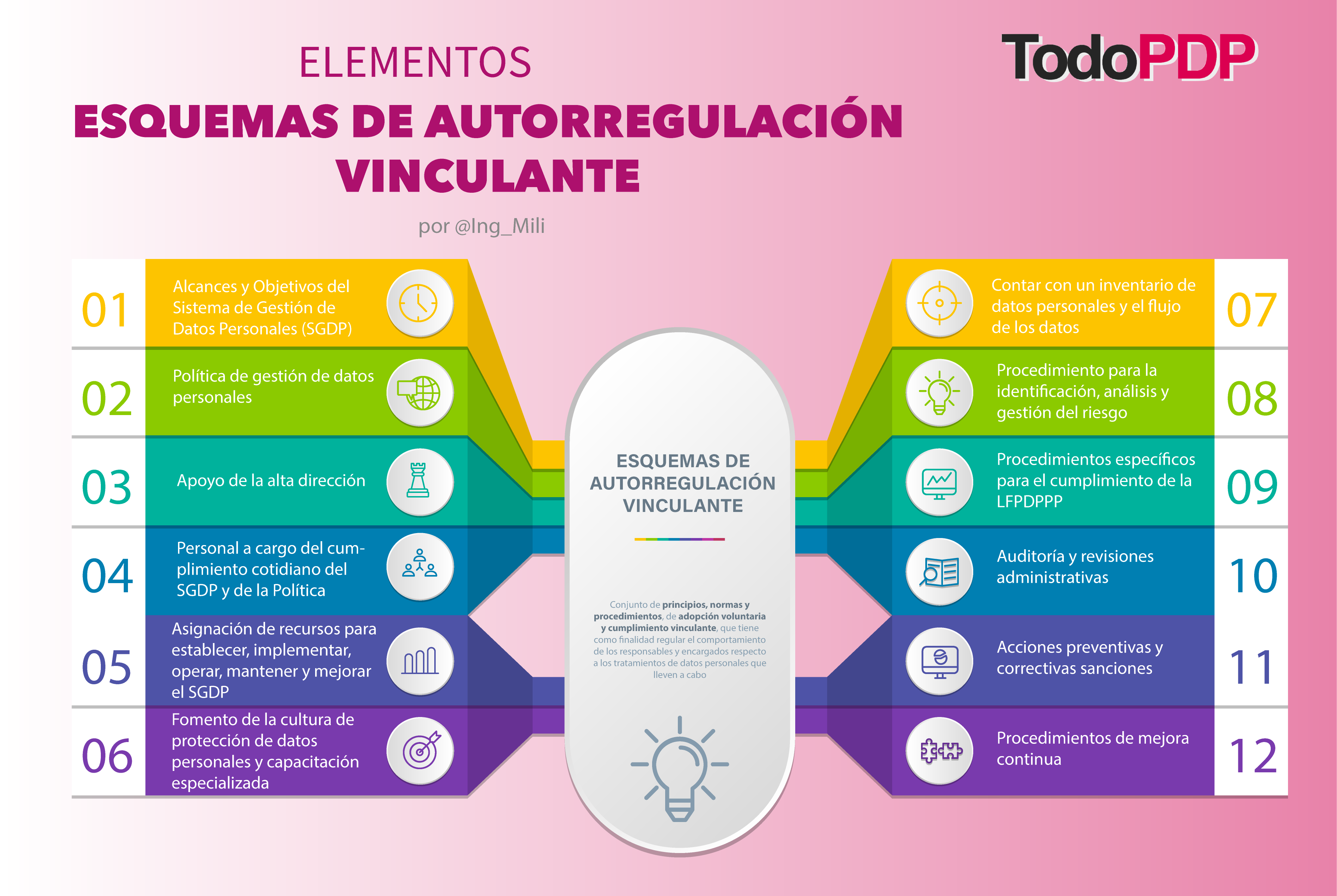 Elementos de un Esquema de Autorregulación Vinculante