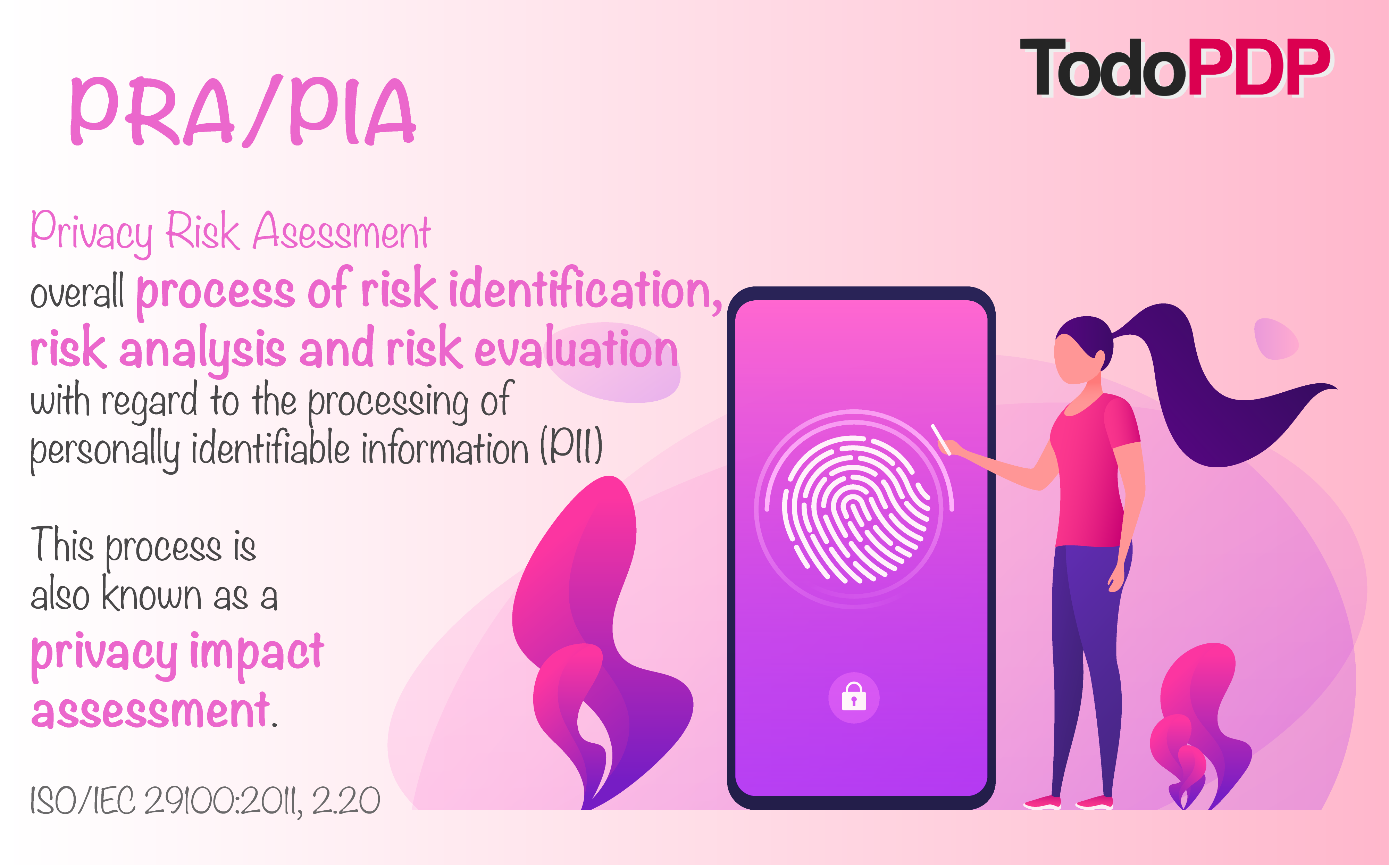 Privacy Risk Assessment